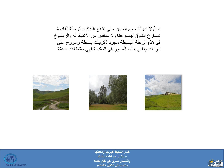 arabtrvl1542277311861.jpg