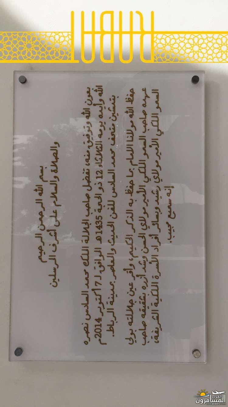 arabtrvl1459190141163.jpg