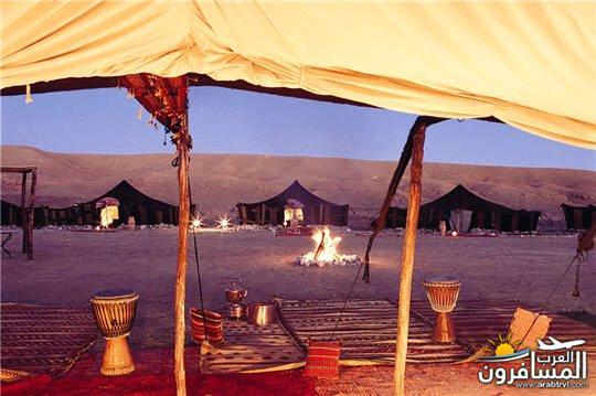 لهجة أهل المغرب-635448