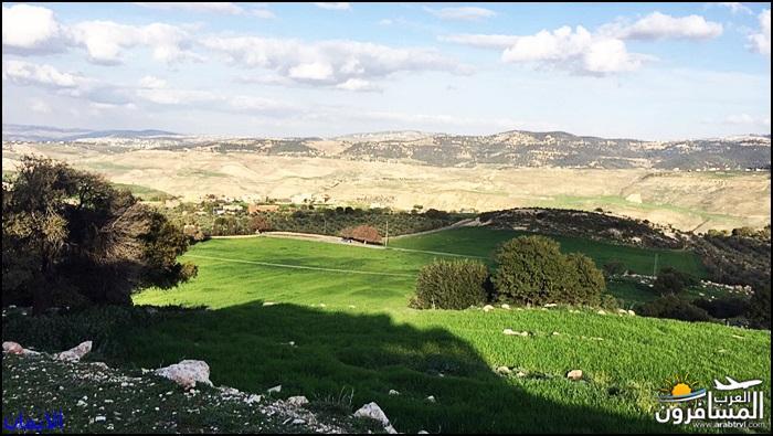 638317 المسافرون العرب الطبيعة الجبلية الخلابة