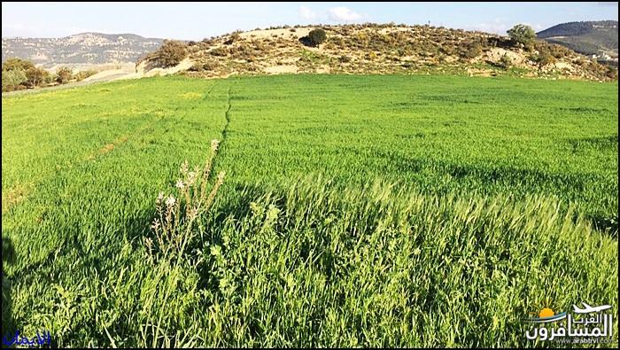 638318 المسافرون العرب الطبيعة الجبلية الخلابة