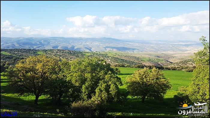 638319 المسافرون العرب الطبيعة الجبلية الخلابة