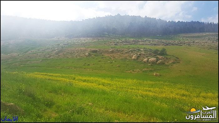 638332 المسافرون العرب الطبيعة الجبلية الخلابة