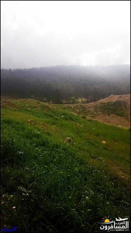 638355 المسافرون العرب الطبيعة الجبلية الخلابة