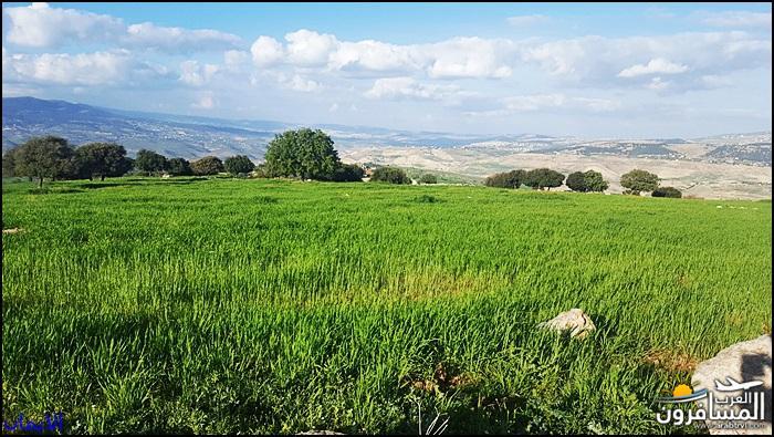 638356 المسافرون العرب الطبيعة الجبلية الخلابة