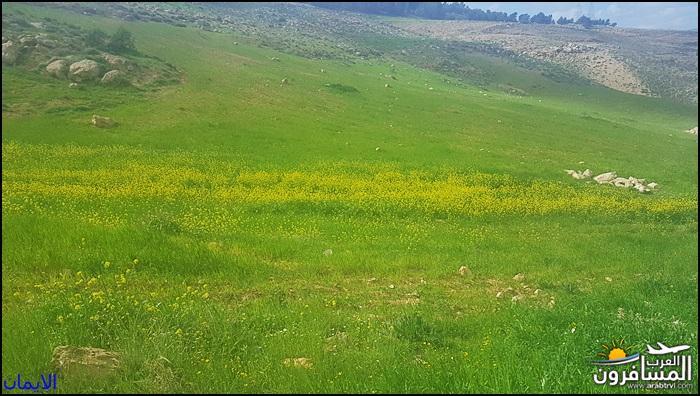 638358 المسافرون العرب الطبيعة الجبلية الخلابة