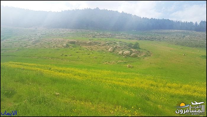 638359 المسافرون العرب الطبيعة الجبلية الخلابة