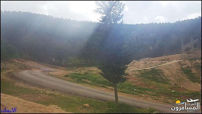 638363 المسافرون العرب الطبيعة الجبلية الخلابة