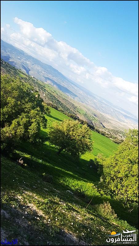 638375 المسافرون العرب الطبيعة الجبلية الخلابة