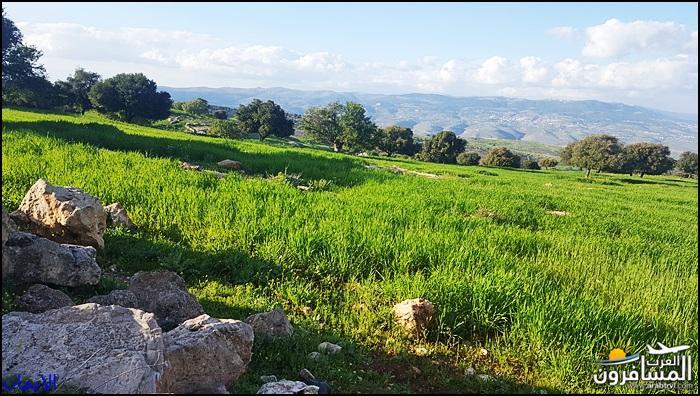 638476 المسافرون العرب الطبيعة الجبلية الخلابة