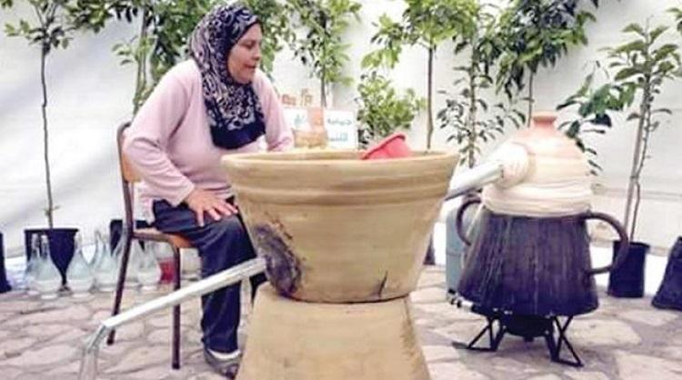 640885 المسافرون العرب مدينة نابل التونسية