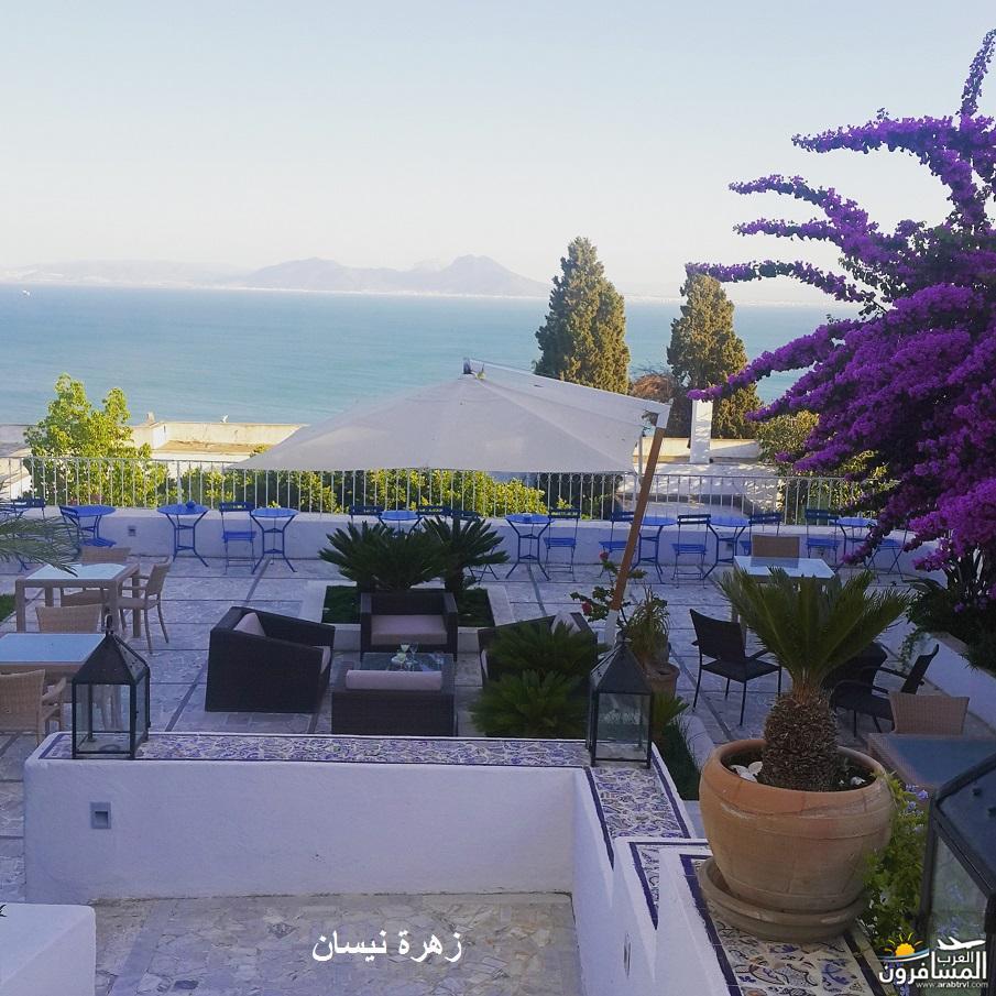 640958 المسافرون العرب فندق دار سعيد
