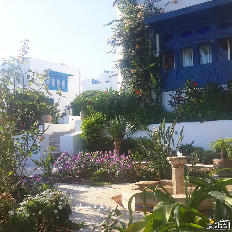 640962 المسافرون العرب فندق دار سعيد