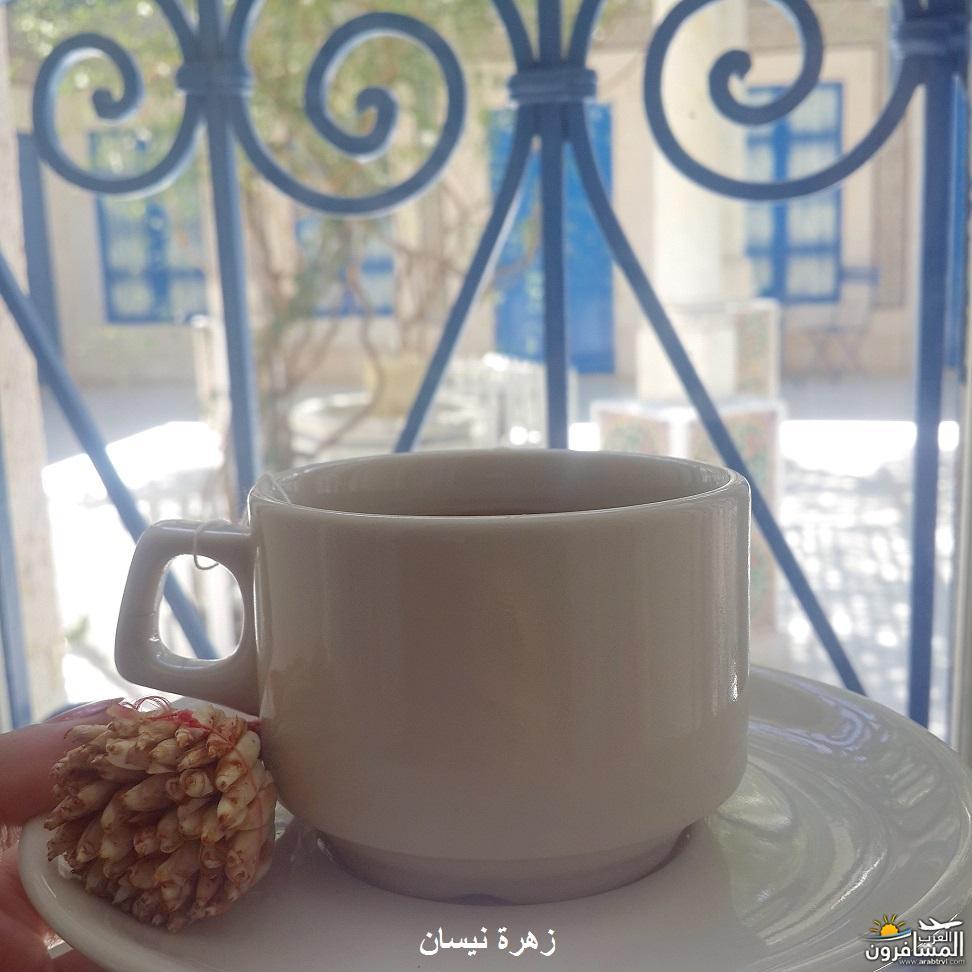 640971 المسافرون العرب فندق دار سعيد