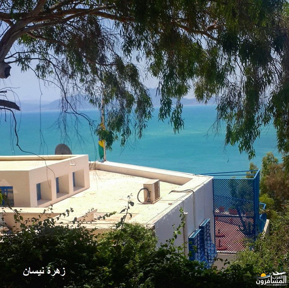 640982 المسافرون العرب فندق دار سعيد