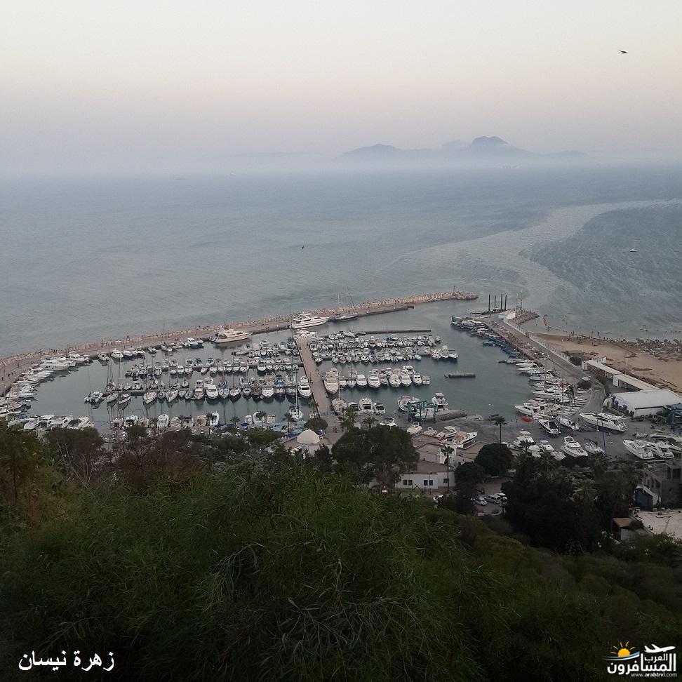 640995 المسافرون العرب فندق دار سعيد