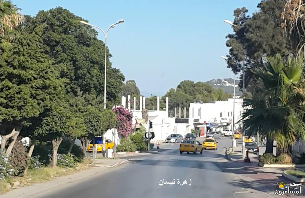 641022 المسافرون العرب فندق دار سعيد