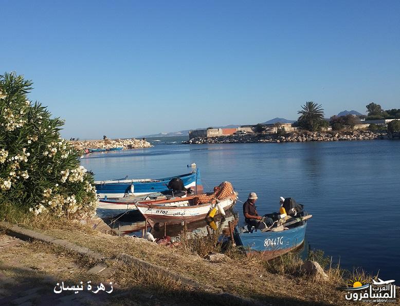 641033 المسافرون العرب فندق دار سعيد