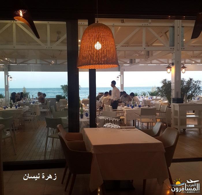 641046 المسافرون العرب فندق دار سعيد