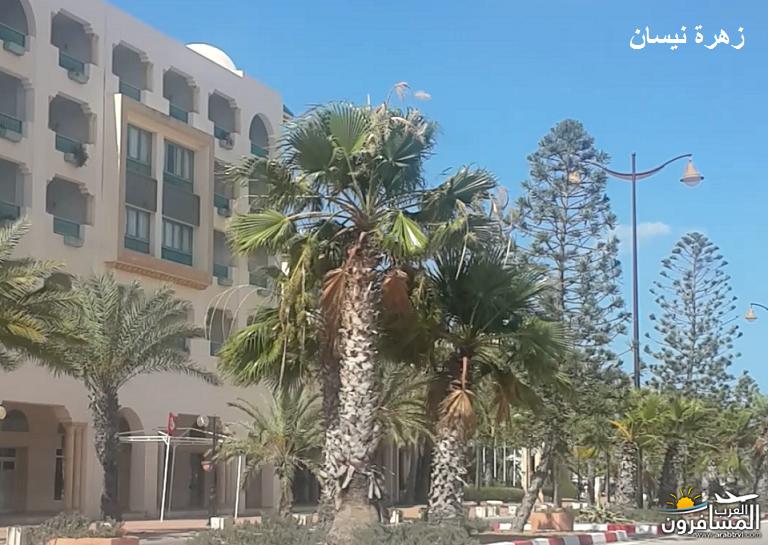 641067 المسافرون العرب فندق دار سعيد