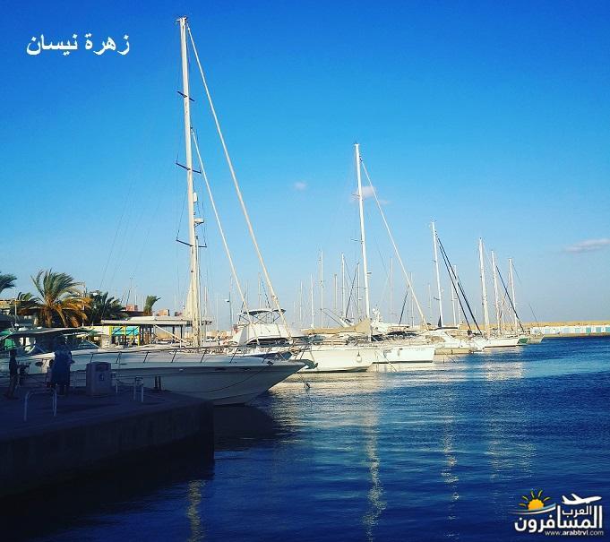 641077 المسافرون العرب فندق دار سعيد