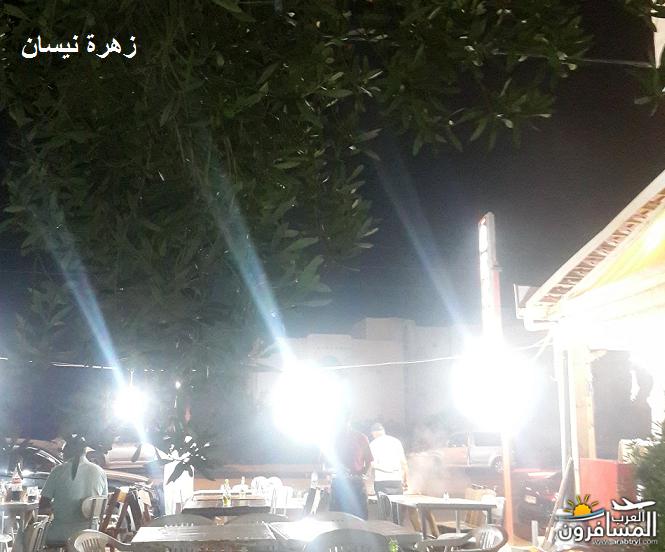 641090 المسافرون العرب فندق دار سعيد