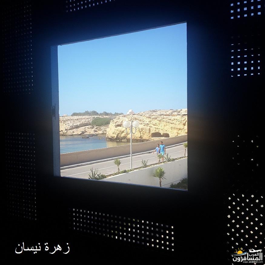 641115 المسافرون العرب فندق دار سعيد