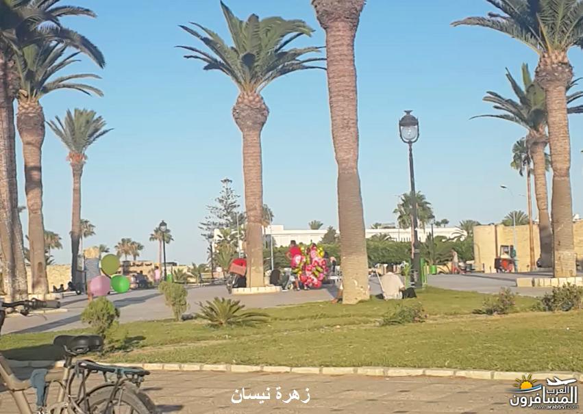 641117 المسافرون العرب فندق دار سعيد