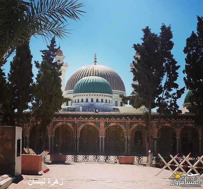 641119 المسافرون العرب فندق دار سعيد