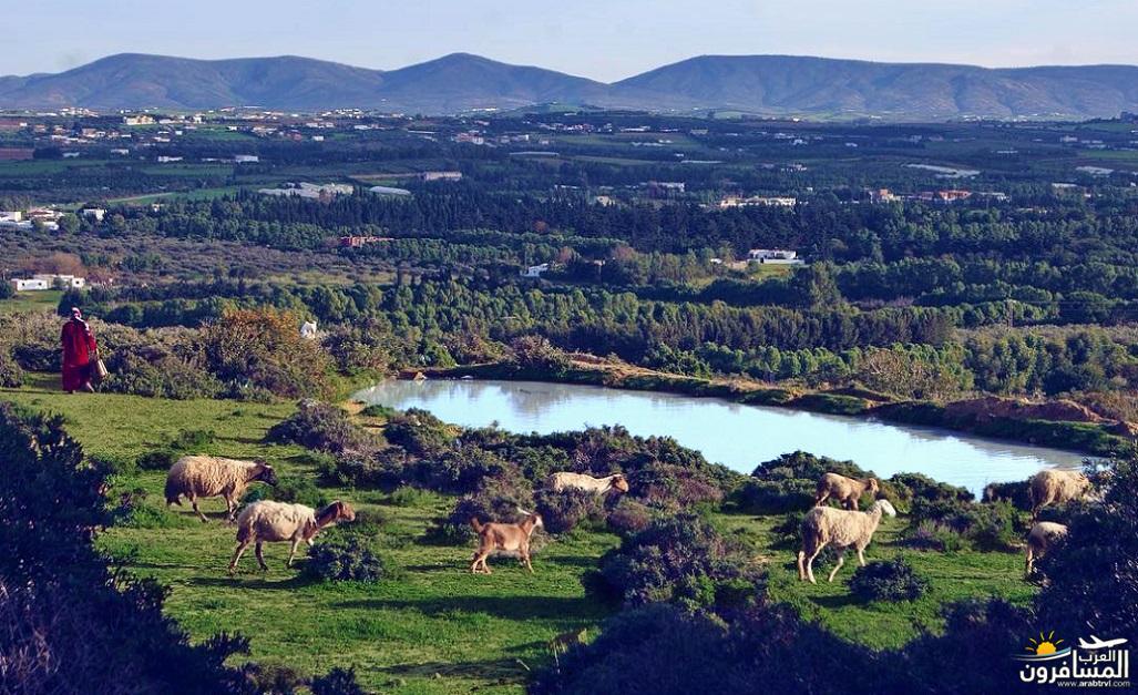 641332 المسافرون العرب الحديقــة الجميلة تزركشها المرتفعات والغابات والسهول