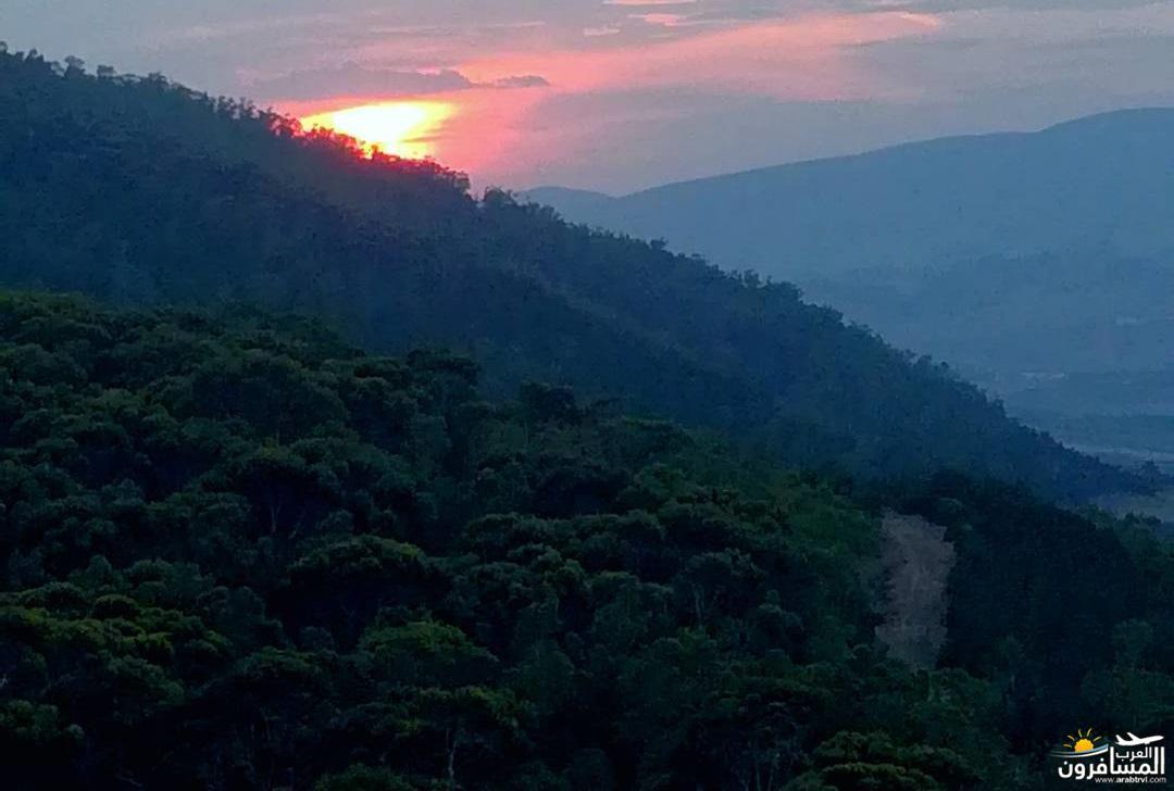 641343 المسافرون العرب الحديقــة الجميلة تزركشها المرتفعات والغابات والسهول