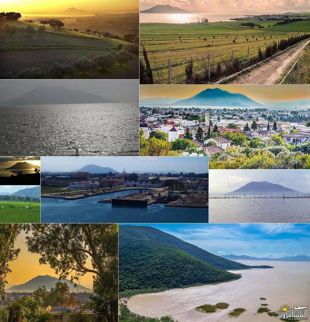 641809 المسافرون العرب خدمات سياحية متطورة في تونس