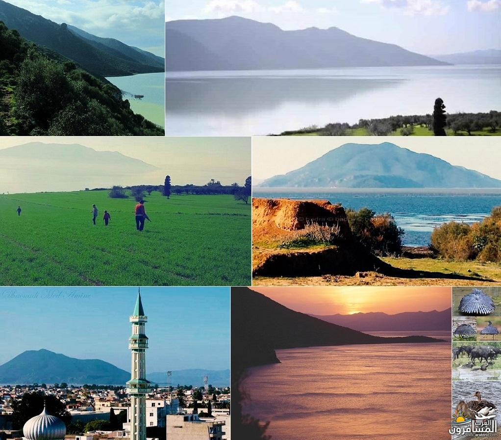 641810 المسافرون العرب خدمات سياحية متطورة في تونس