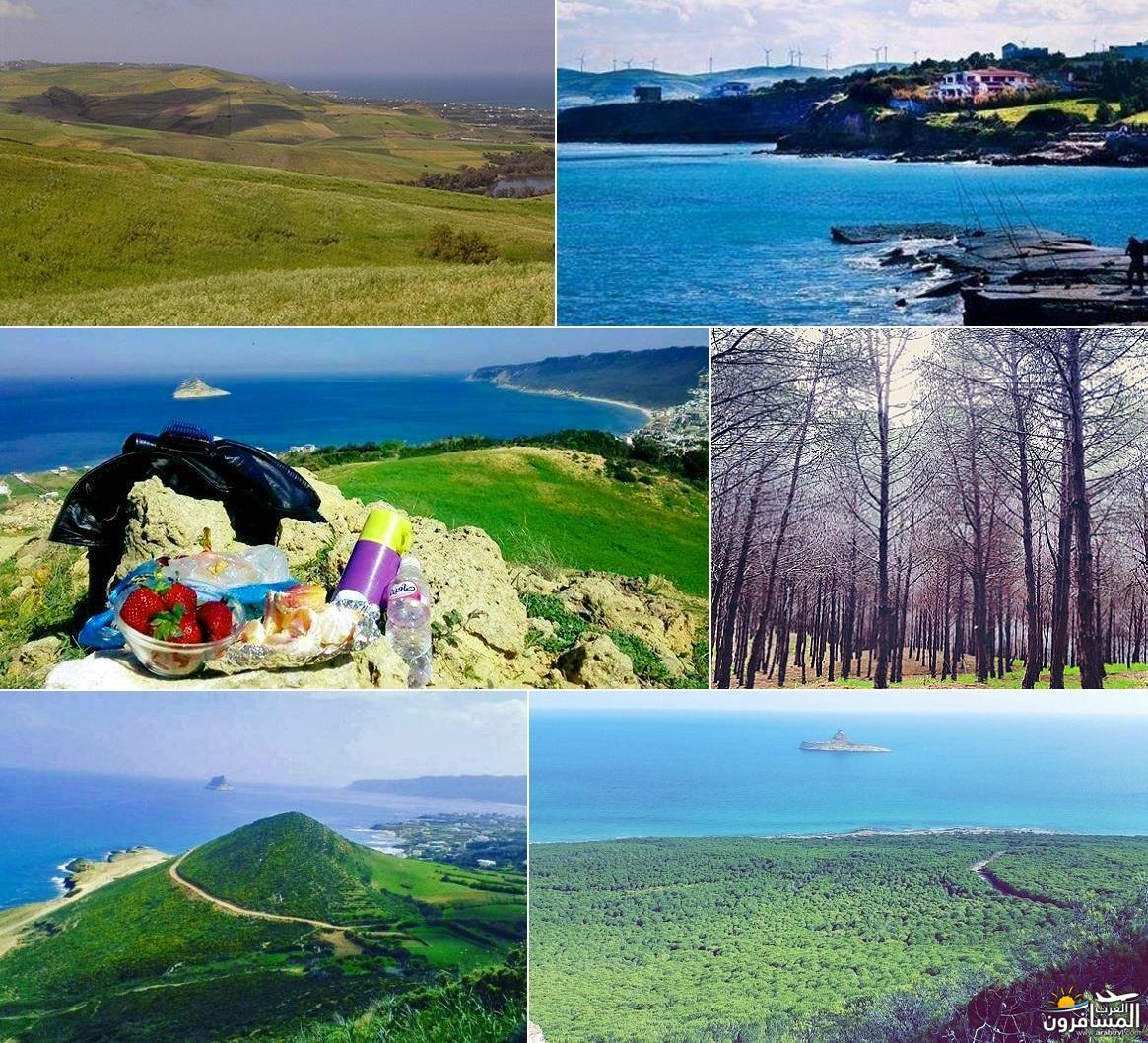 641813 المسافرون العرب خدمات سياحية متطورة في تونس