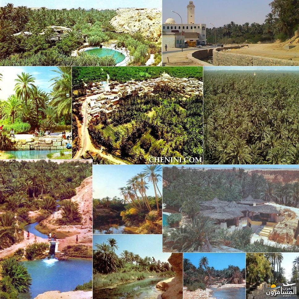 641823 المسافرون العرب خدمات سياحية متطورة في تونس