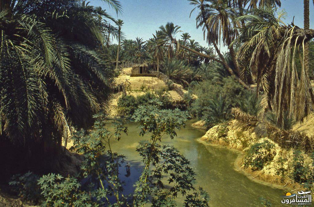 641824 المسافرون العرب خدمات سياحية متطورة في تونس
