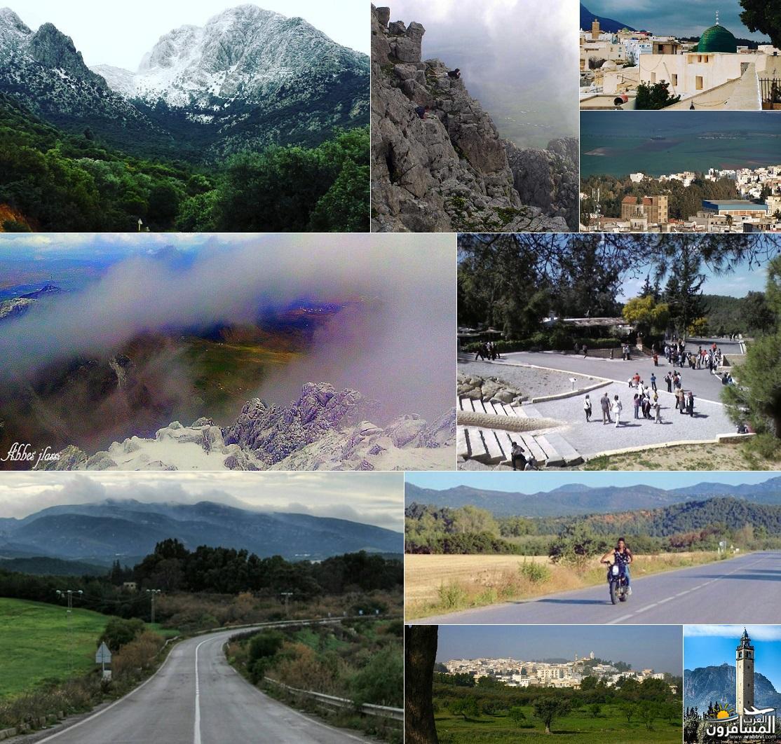 641829 المسافرون العرب خدمات سياحية متطورة في تونس