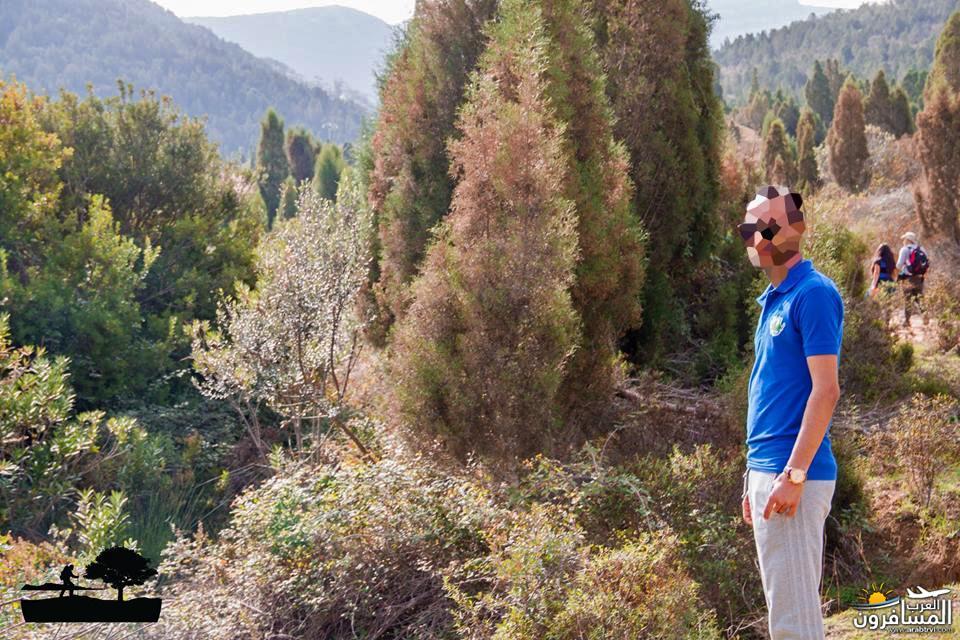 641924 المسافرون العرب خدمات سياحية متطورة في تونس