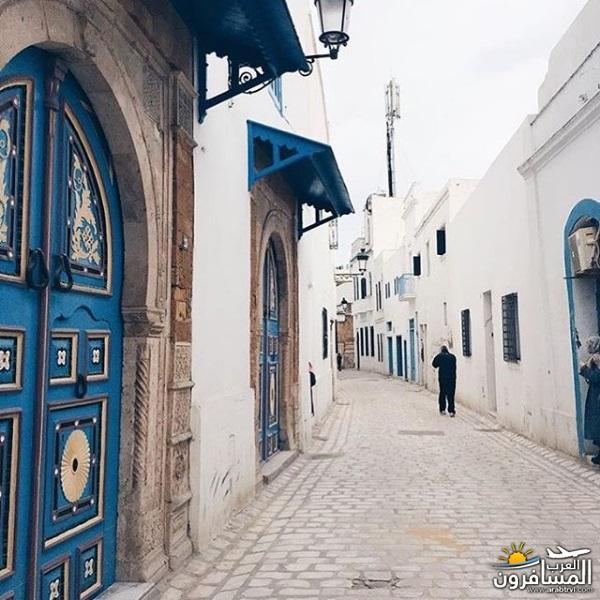 641959 المسافرون العرب الاجواء الشتوية فى تونس