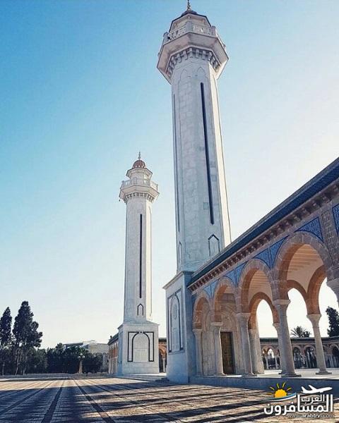 641967 المسافرون العرب الاجواء الشتوية فى تونس