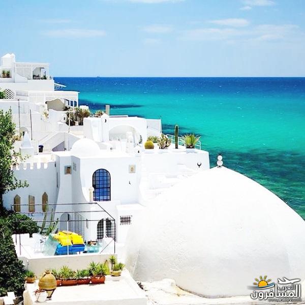 641971 المسافرون العرب الاجواء الشتوية فى تونس
