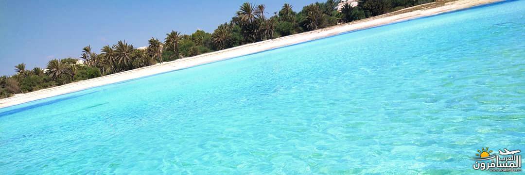 642697 المسافرون العرب الطبيعة الخلابة والاجواء الربيعية فى تونس