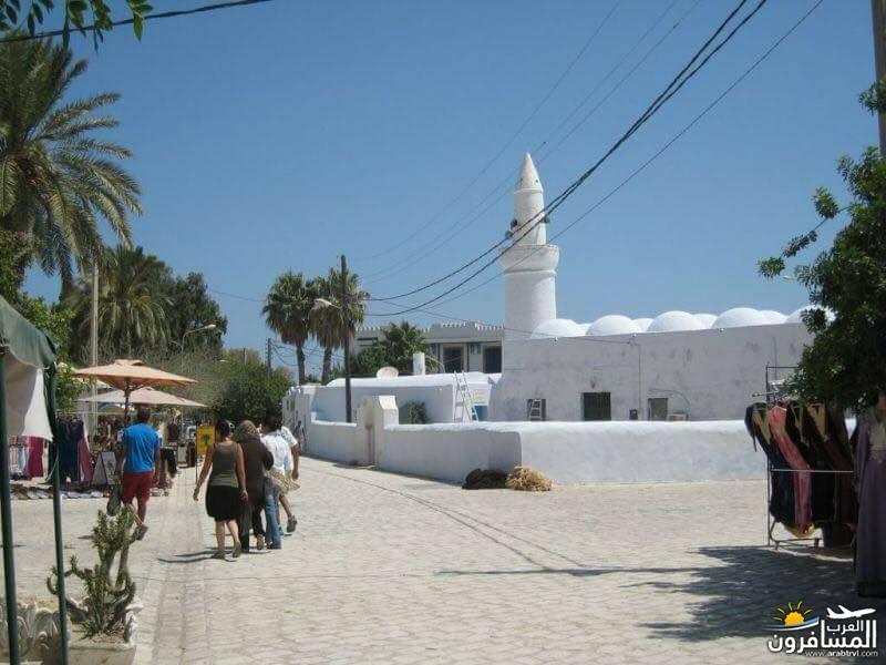 642700 المسافرون العرب الطبيعة الخلابة والاجواء الربيعية فى تونس