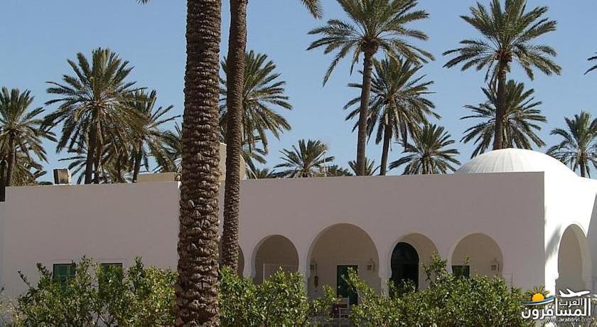 642703 المسافرون العرب الطبيعة الخلابة والاجواء الربيعية فى تونس