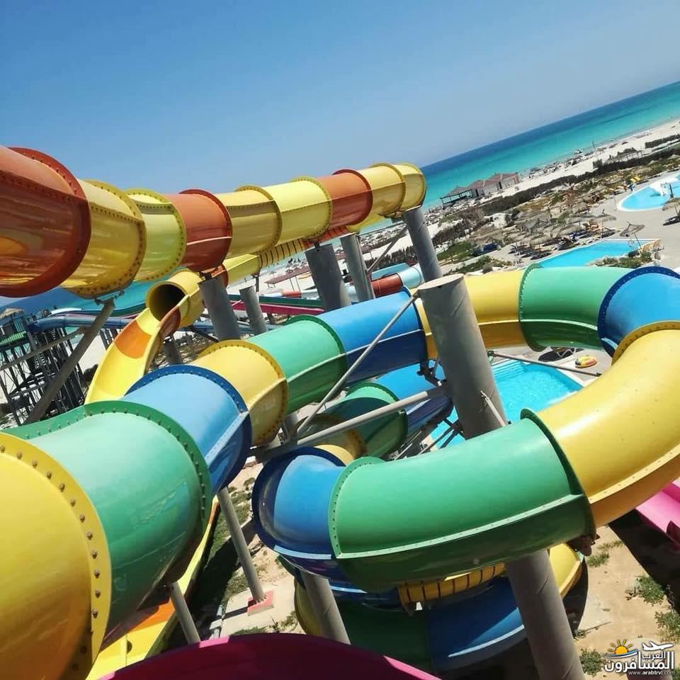 642705 المسافرون العرب الطبيعة الخلابة والاجواء الربيعية فى تونس