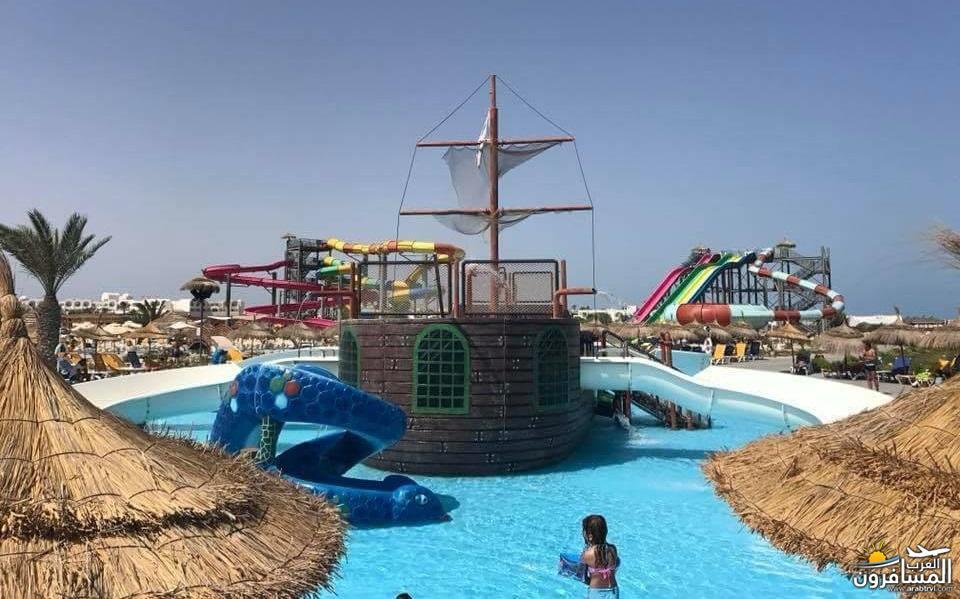 642707 المسافرون العرب الطبيعة الخلابة والاجواء الربيعية فى تونس