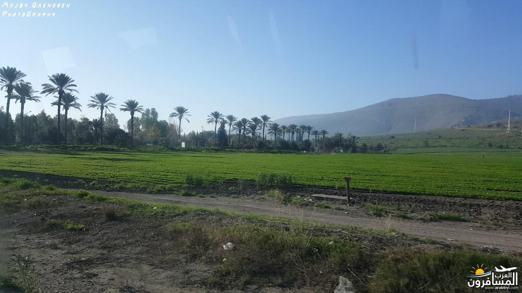 642827 المسافرون العرب الأغوار الشمالية - فلسطين
