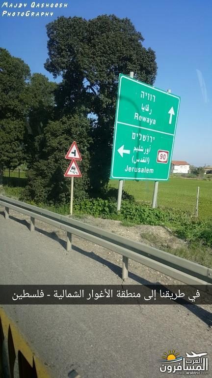 642831 المسافرون العرب الأغوار الشمالية - فلسطين