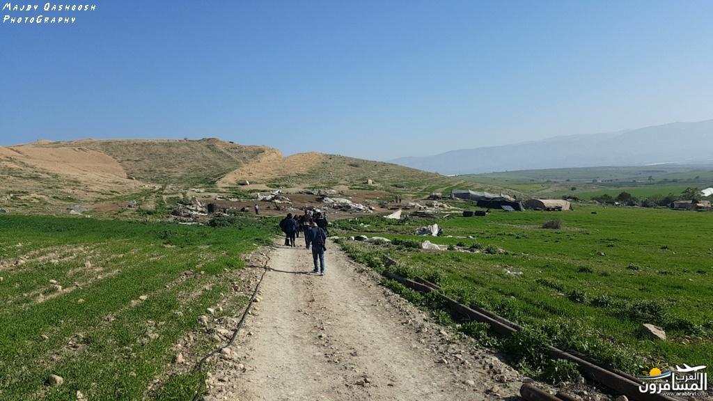 642833 المسافرون العرب الأغوار الشمالية - فلسطين