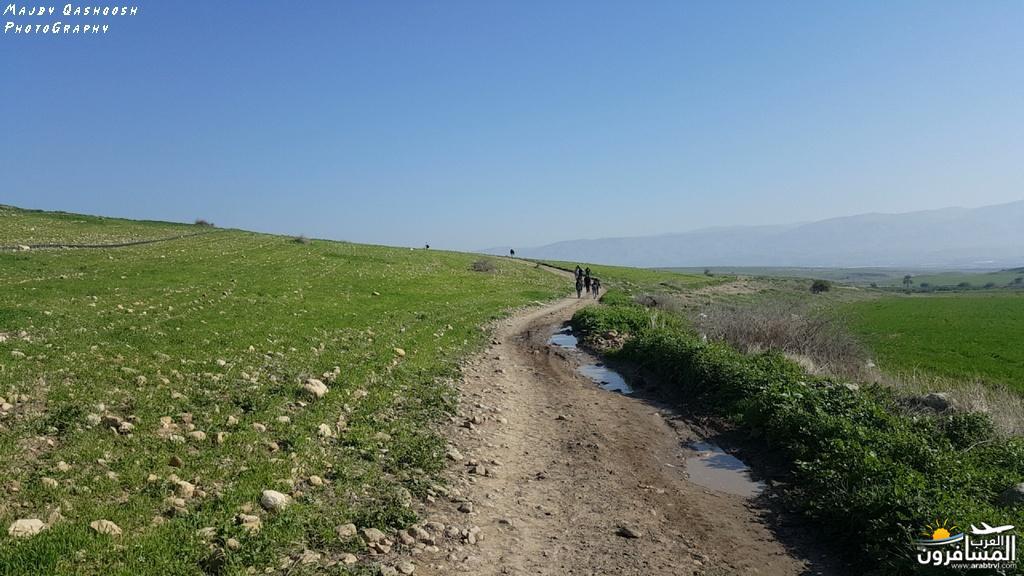 642840 المسافرون العرب الأغوار الشمالية - فلسطين